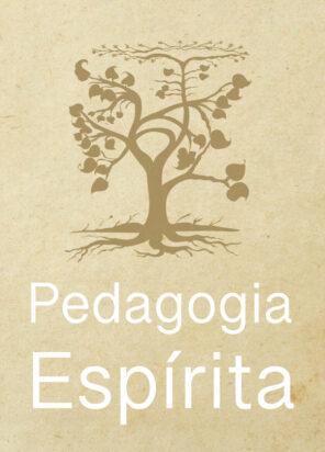 Pedagogia Espírita